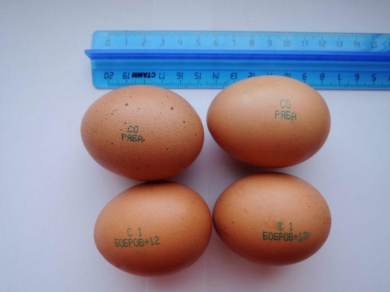 Яйца разных категорий.