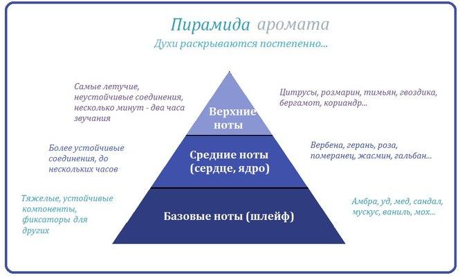 Пирамида аромата в парфюмерии.