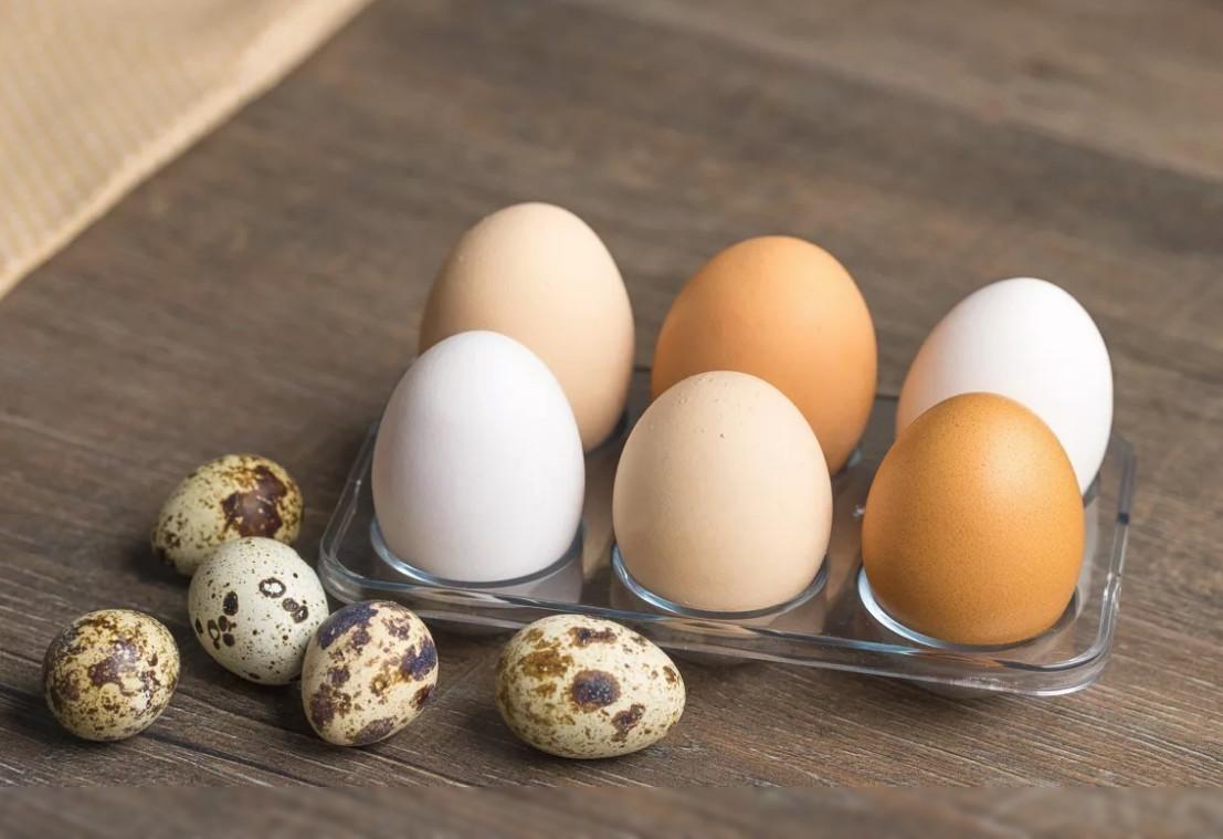 Какие яйца полезнее куриные или перепелиные