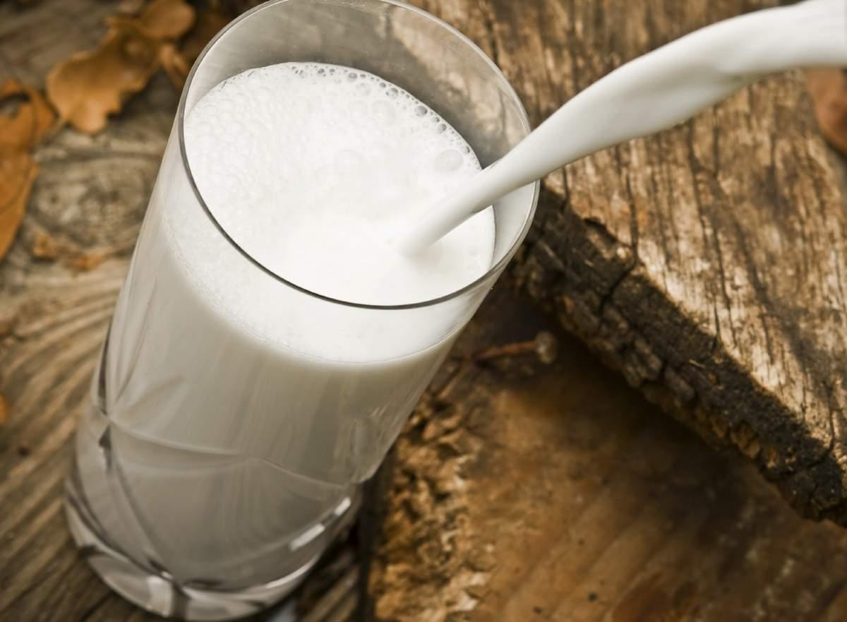 Нормализованное молоко это какое
