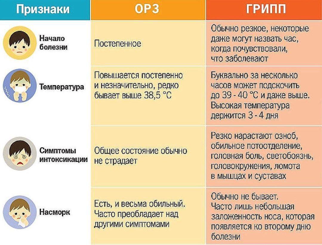 Отличия ОРЗ от гриппа таблица.